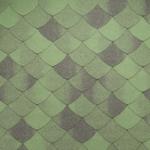 зеленый Смельдо