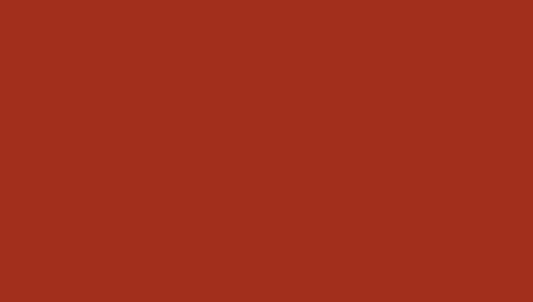 кирпично-красный RR 750 (RAL 8017)