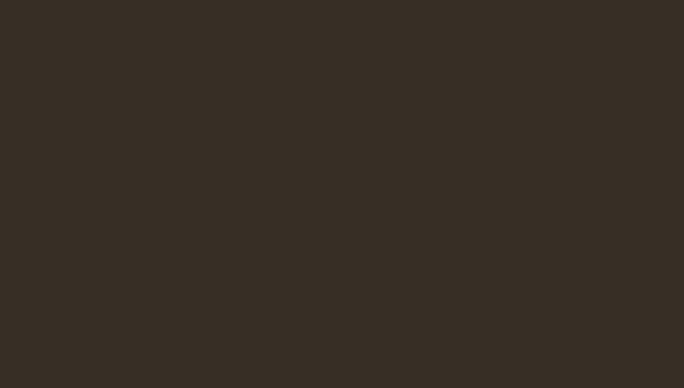 коричневый шоколад RR 887 (RAL 8017)