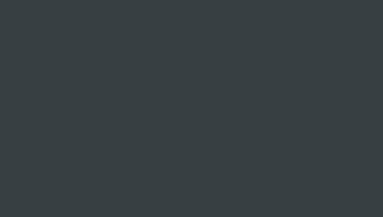 серый антрацит (RAL 7016)