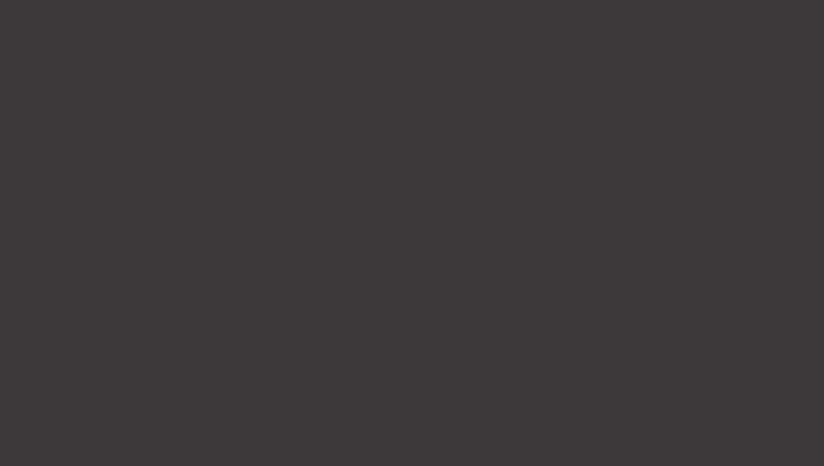 темно-коричневый RR 32 (RAL 8019)