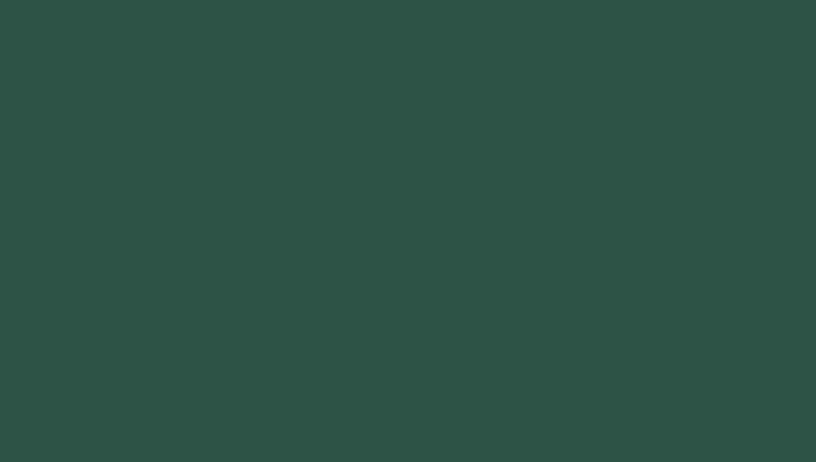 хромовая зелень (RAL 6020)